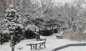 Du lịch Daegu mùa đông có dễ mắc bệnh không?
